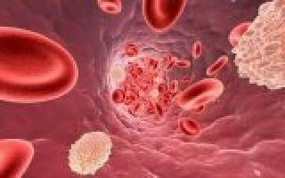 Повышенные лейкоциты в мазке и молочница при беременности